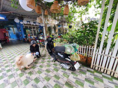 an vat ma lun bao loc (4)