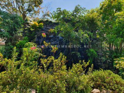 pham garden caffe bao loc (12)