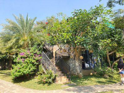 pham garden caffe bao loc (13)