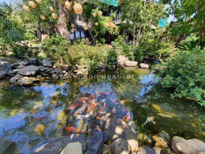 pham garden caffe bao loc (24)