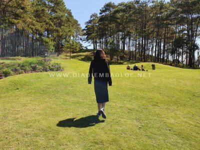 Sân golf bao quanh là đồi thông