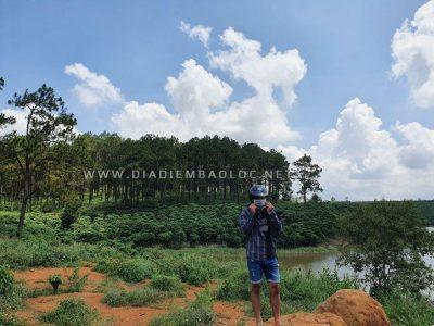 rung thong baoloc (3)