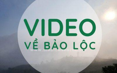 video bao loc