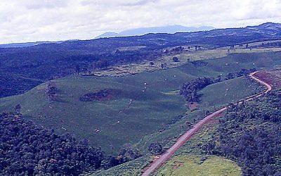 bao loc 1967